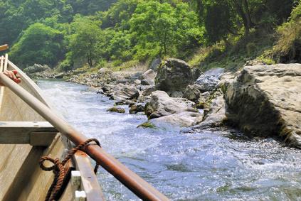 夏の京都保津川下り 舟と櫂と岸辺